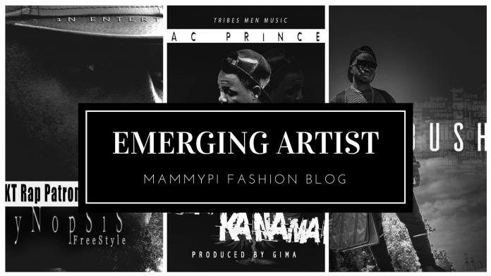 Top Five Cameroonian Emerging Artiste 2017